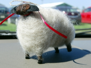 This is what you come home with when you bring Paul Miller to a sheep show!