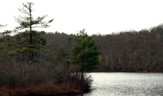Surprise Lake